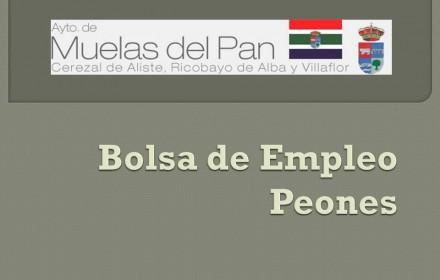 Bolsa de Empleo muelas nov 2015