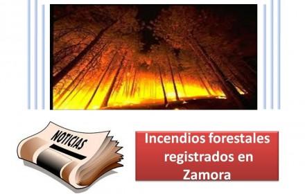Incendios forestales registrados en Zamora
