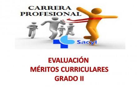 informes meritos curriculares grado II 2105