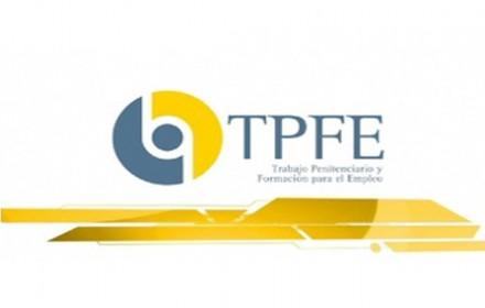 Concurso traslados resolucion gerente tpfe