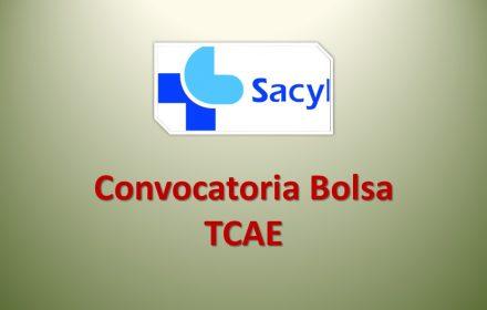 Bolsa tcae ene-2017
