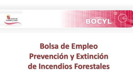 bolsa incendios forestalesmar-2017