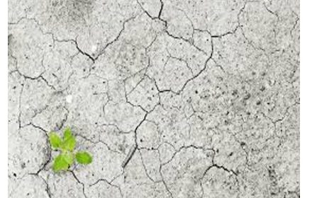Jornadas Ley Cambio Climático Transición Energética