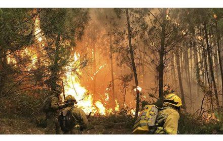 Gobierno cierra Campaña Incendios cien incendios activos Noroeste