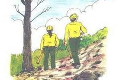Servicio Extinción Incendios forestales todo el año