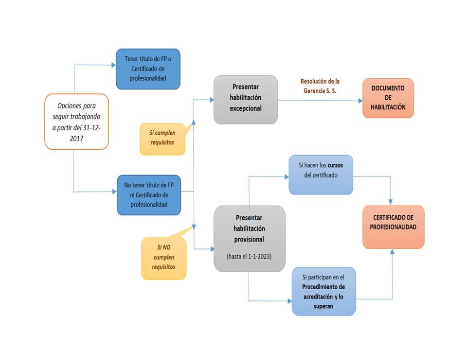 acreditacion competencias profesionales esquema