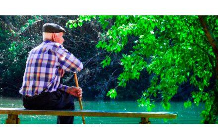 insta Gobierno aumentar pensiones viudedad