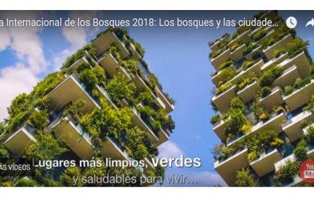dia internacional de los bosques 2018