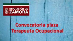 plaza terapeuta ocupacional jul-2018