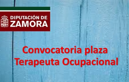 plaza terapeuta ocupacional jul-2018