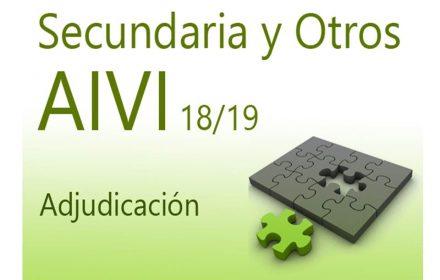 AIVI 18-19 Secundaria y otros Adjudicación