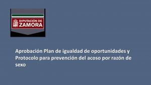 Diputación Zamora Plan igualdad