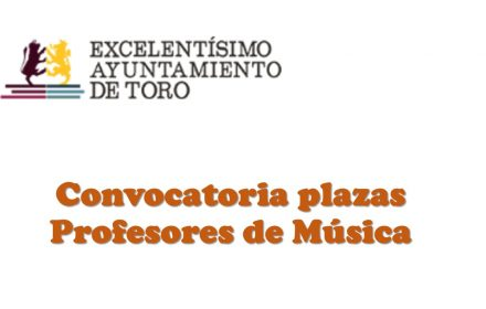 toro plazas profesor musica