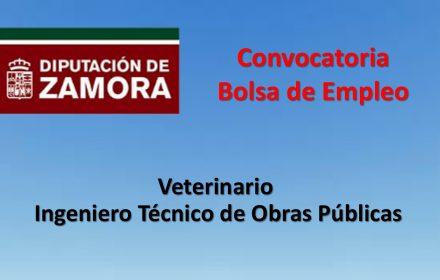 Bolsa Empleo veterinario ingeniero nov-2018