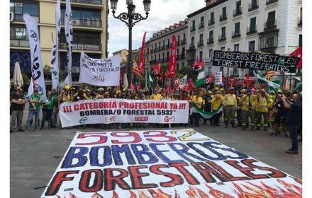 Día Internacional Bombero Forestal