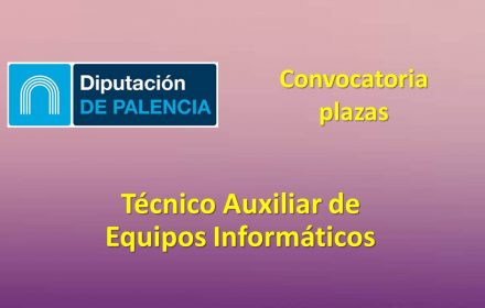 Diputacion Palencia tec aux equip inf jun-2019