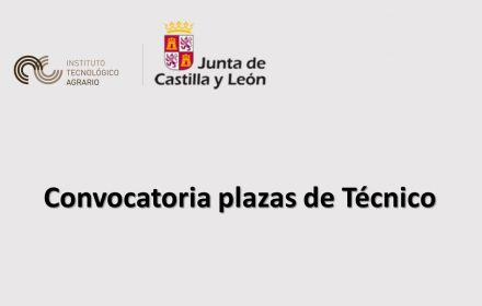 itacyl plazas tecnico