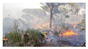 cese responsables operativo incendios CYL