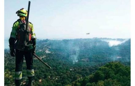trabajos estables forestal evitar incendios accid laborales
