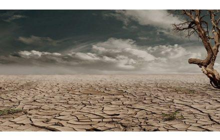guía cambio climático educativo