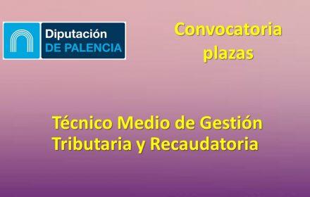 Diputac Palencia Tecnico medio gestion oct-2019