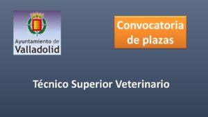 Ayto Valladolid veterinario dic-2019