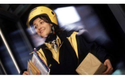 Consolidación Empleo Respuestas Correctas