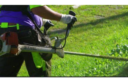 FEMP criterios comunes para jardinería