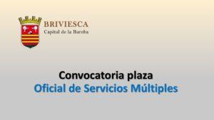Ayto Bribiesca Oficial Servicios jul-2020