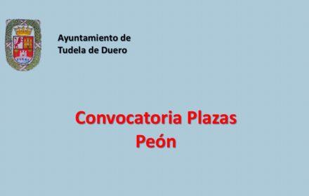 Ayto Tudela peón jul-2020
