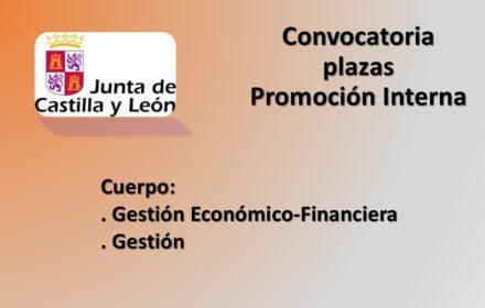 ope gestion y eco-financ interna jul-2020