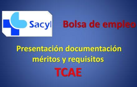 Bolsa tcae documentos sep-2020