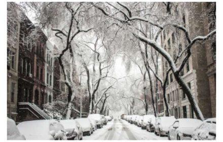 no puede acudir al trabajo temporal nieve frío