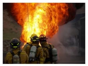 Incendios forestales la paradoja del fuego