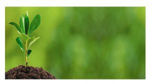 Gobierno mete tijeretazo medio ambiente PGE 2017