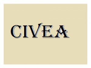 CIVEA Reunión Grupo Interpretación