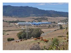 UGT Algeciras se suma movilizaciones