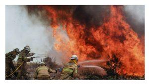 Medio Ambiente Orden de incendios 2018