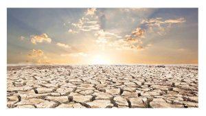 UGT en el Día contra la desertificación