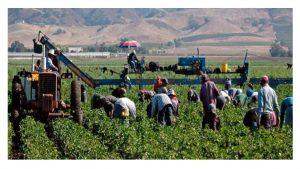 reclama fiscalía delitos contra derechos trabajadores