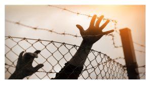 No crisis refugiados sino crisis valores UE