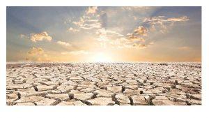 Plan contra Desertificación necesita presupuestaria