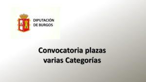 Dip Burgos varias plazas mar-2020